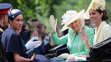 Camilla & Co.: Im Auftrag der Krone