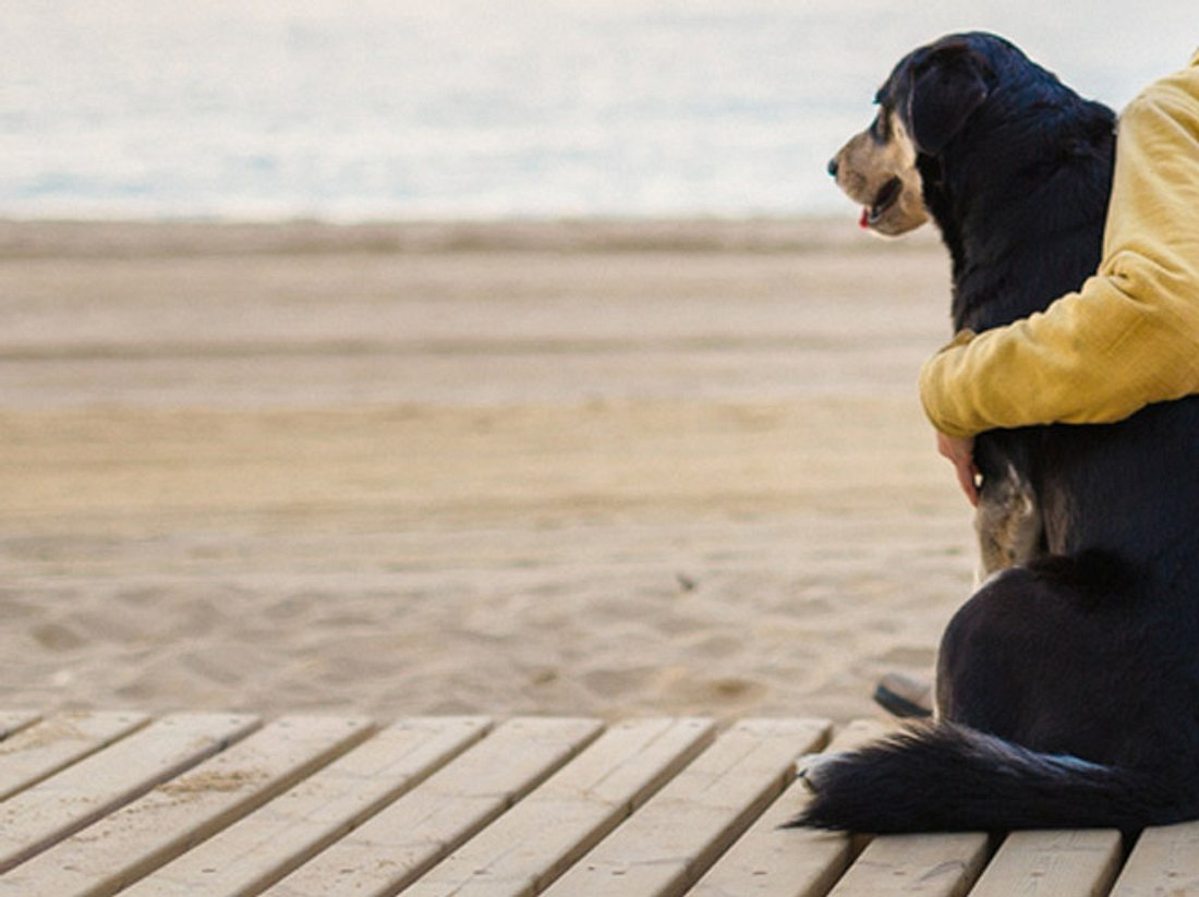 Ungewöhnliche Freundschaft: Junge & Hund verbindet Erkrankung