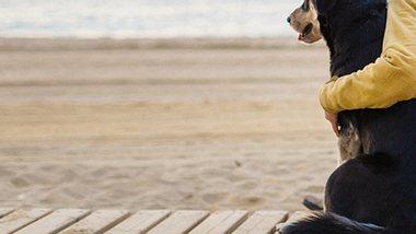 Ungewöhnliche Freundschaft: Junge & Hund verbindet Erkrankung - Foto: deimagine / iStock