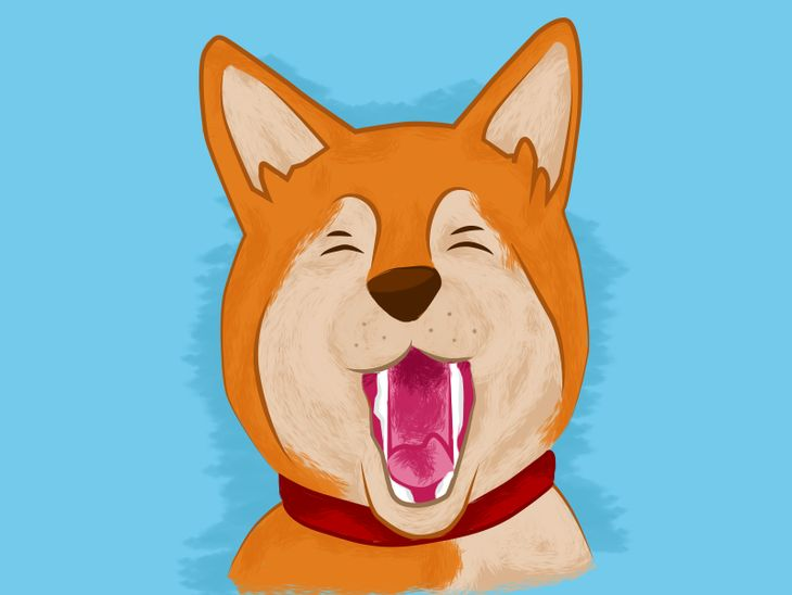 Hundesprache verstehen: Was bedeutet es, wenn mein Hund gähnt?