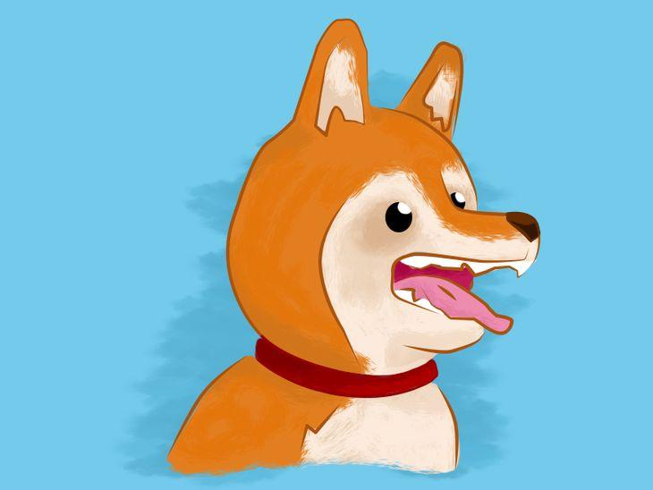 Hundesprache verstehen: Was bedeutet lautloses Knurren?