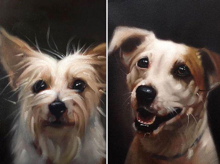 Der Künstler Stephen Gallagher will mit einer besonderen Porträt-Serie dafür sorgen, Tierheimhunde im australischen Brisbane zu vermitteln.