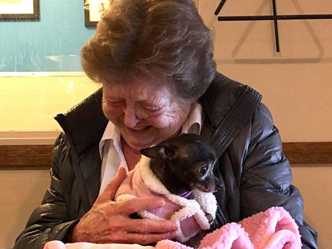 Nachdem ihr geliebter Chihuahua gestorben war, wollte die 73-jährige Jerri McCutcheon eigentlich keinen neuen Hund mehr - doch in Minnie verliebte sie sich auf den ersten Blick.
