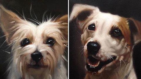 Der Künstler Stephen Gallagher will mit einer besonderen Porträt-Serie dafür sorgen, Tierheimhunde im australischen Brisbane zu vermitteln. - Foto: Stephen Gallagher Art