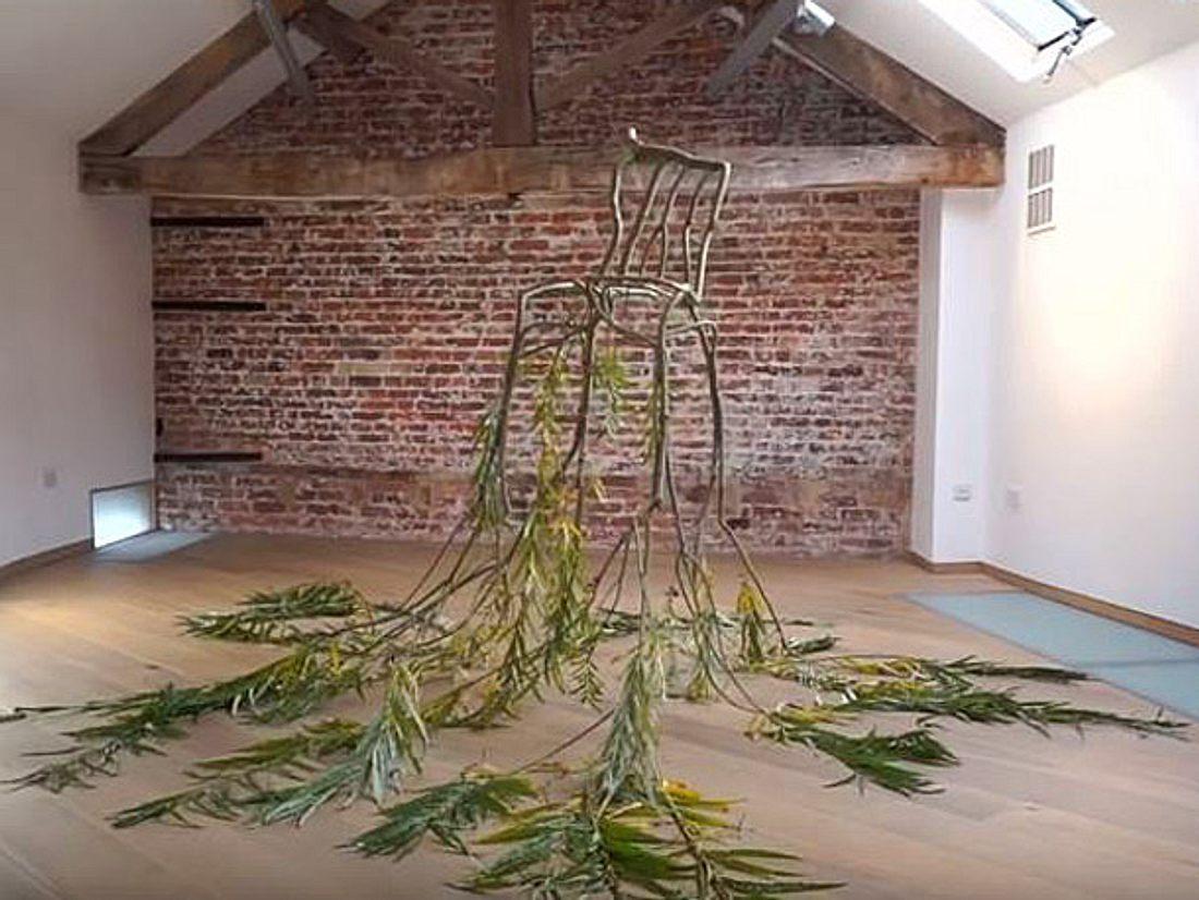 Die Firma Full Grown aus England stellt aus Bäumen einzigartige Möbel her, die nur durch das Wachsen der Äste entstehen.