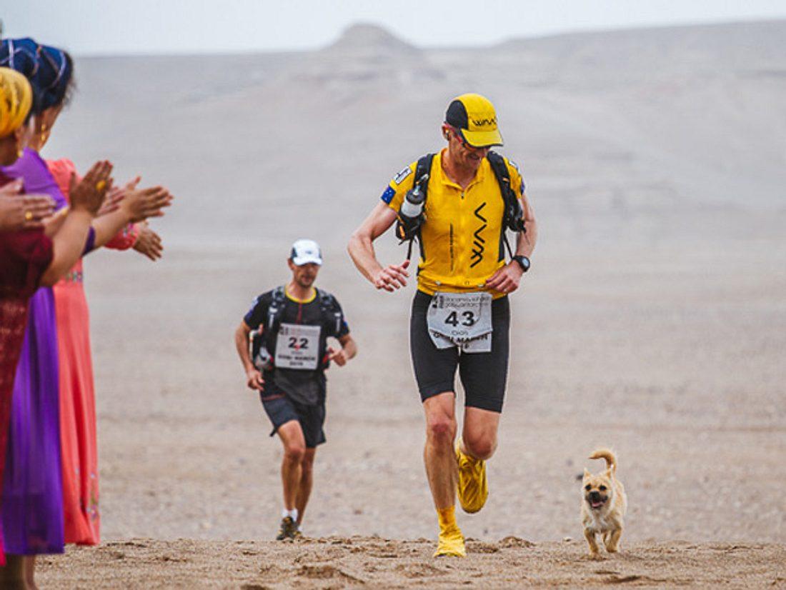 Bei einem Wettrennen in der Wüste Gobi klinkte sich plötzlich ein streunender Hund mit ein und fand dabei ein neues Herrchen.