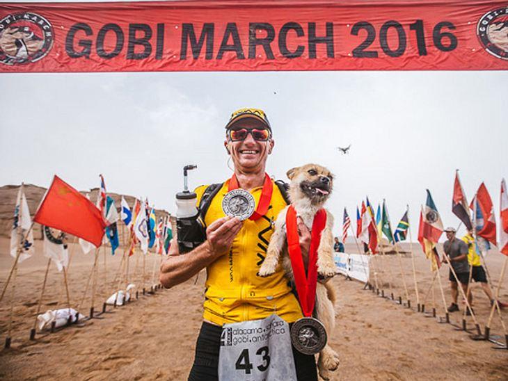 Beim Gobi March 2016 lief Dion Leonard zusammen mit Hündin Gobi ins Ziel.