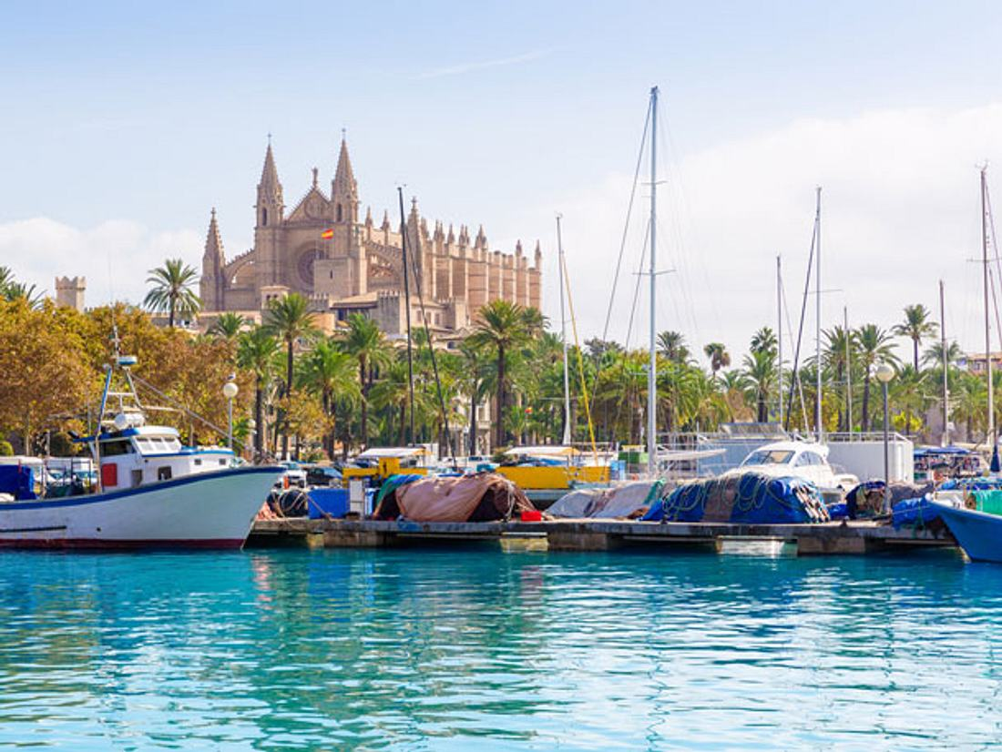 Palma de Mallorca im Frühling bereisen.