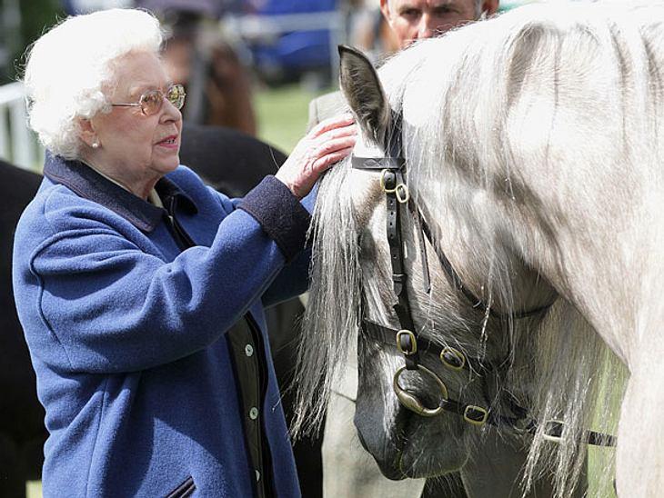 Queen Elizabeth: Hunde, Pferde & Co – Ihr persönlicher Streichelzoo