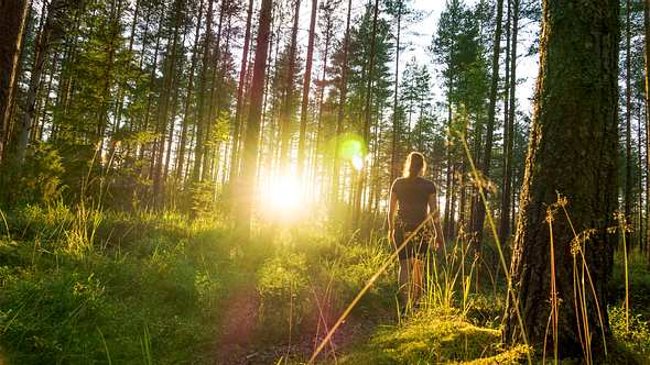 Beim Spazierengehen innere Ruhe finden