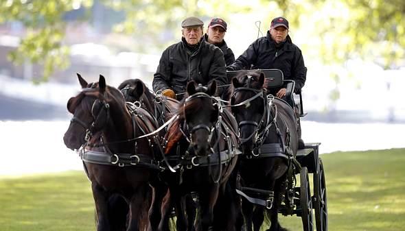 Prinz Philip: Pferde sind seine Leidenschaft