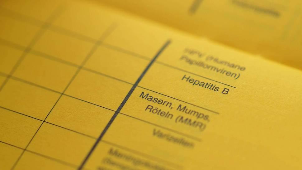 Impfpass Hülle - Foto: iStock/Imagesines