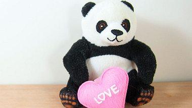 Plüsch-Panda mit herziger Botschaft