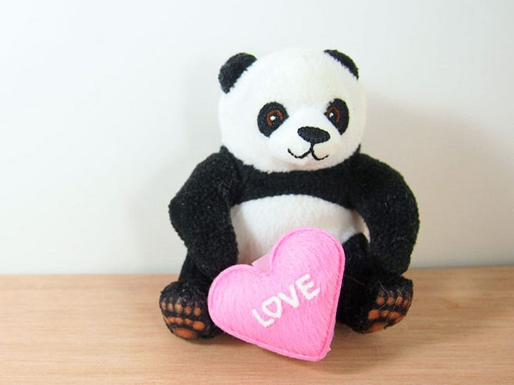 Ein Junge aus Liverpool hatte sein Herz an einen Plüsch-Panda verloren.