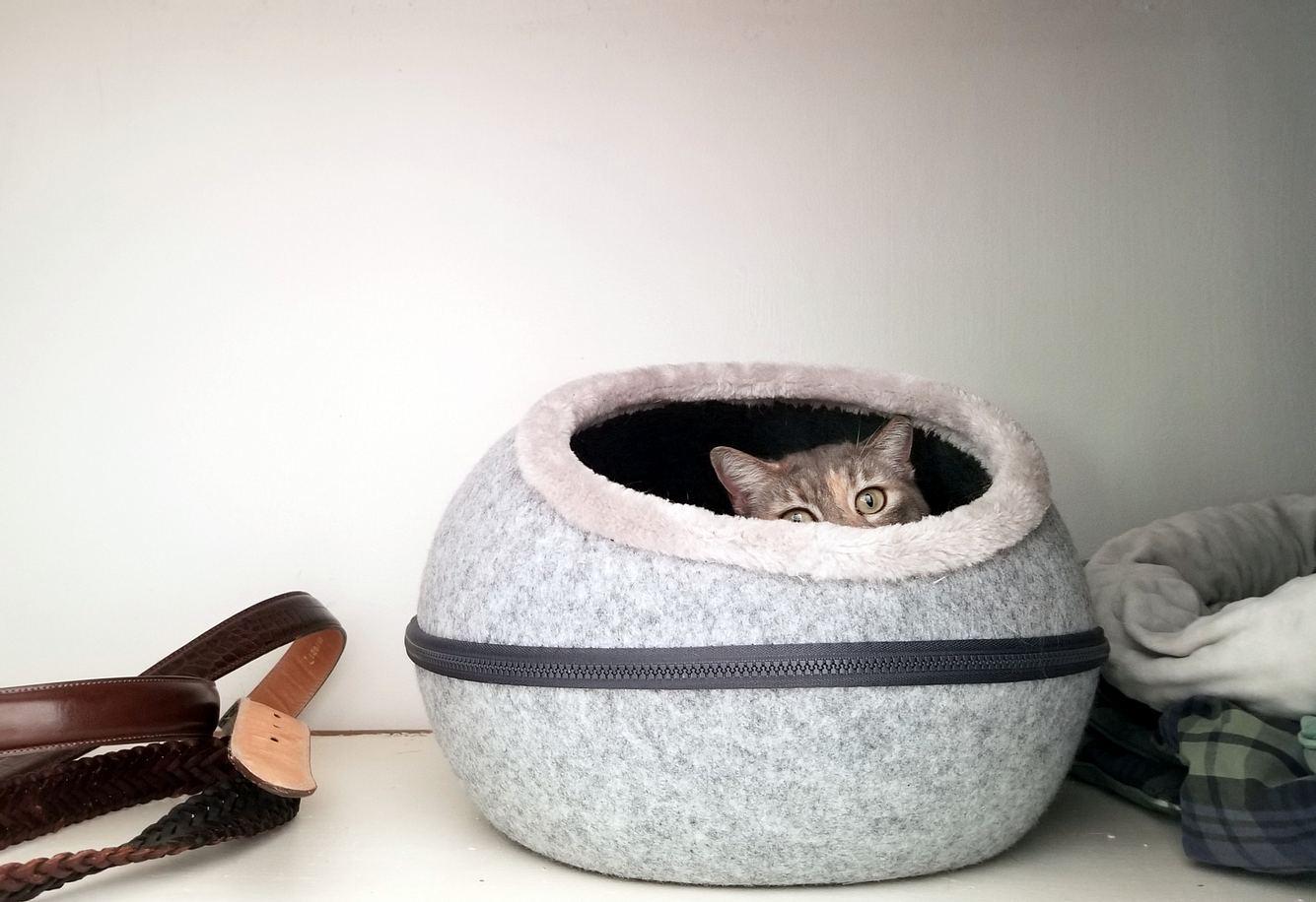 Katze versteckt sich in Katzenhöhle aus Filz