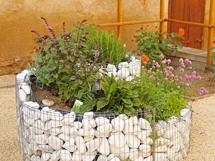 Kräuterspirale & Co.: So legen Sie einen Kräutergarten an