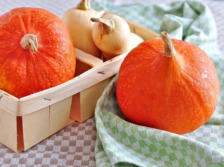 Der Hokkaido und der Butternusskürbis gehören zu den beliebtesten Kürbissorten.
