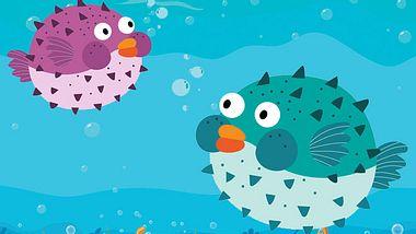 Kugelfische sind kreative Meister bei der Partnersuche - Foto: natchapohn / lightkitegirl / iStock