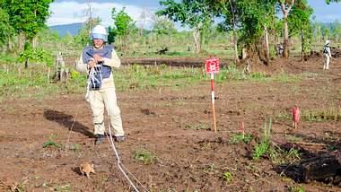 Ein Landminensucher mit einer speziell ausgebildeten Ratte an der Leine. - Foto: iStock / noelhtan