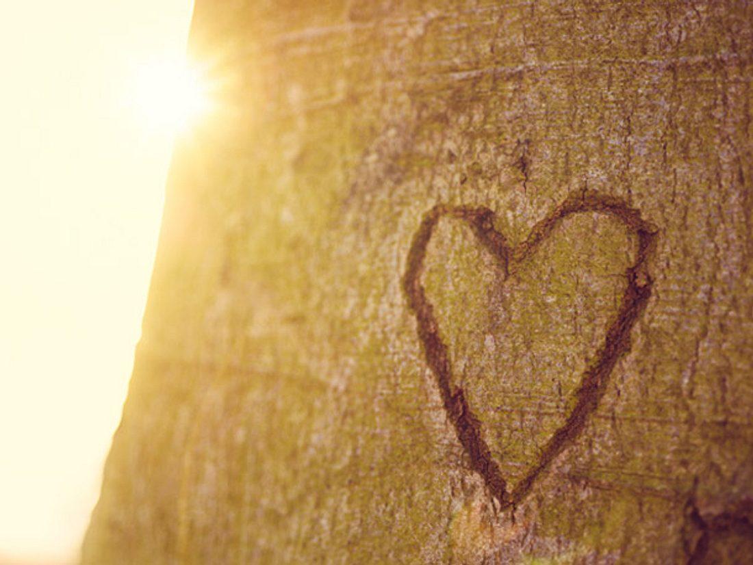 Sie sollten nie den Glauben an die Liebe verlieren.