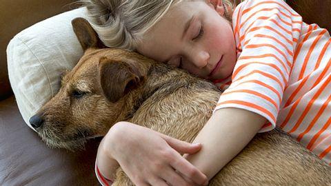 Eine Studie besagt, dass Kinder oft eine engere Bindung zu Haustieren haben als zu ihren Geschwistern. - Foto: DGLimages / iStock