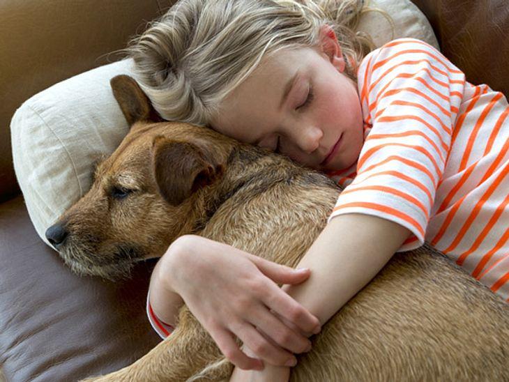 Eine Studie besagt, dass Kinder oft eine engere Bindung zu Haustieren haben als zu ihren Geschwistern.