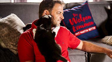 Martin Rütter erfreut sich als Hundeprofi großer Beliebtheit. - Foto:  MG RTL D / Arya Shirazi
