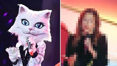 Die Katze bei Masked Singer ist eine bekannte Schlagersängerin. - Foto: ProSieben/Willi Weber, Tristar Media/Getty Images