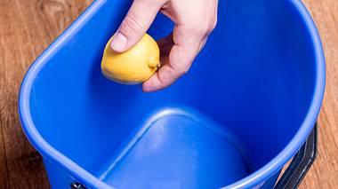 Eine Zitrone kann helfen, wenn der Mülleimer stinkt. - Foto: Qwart / iStock