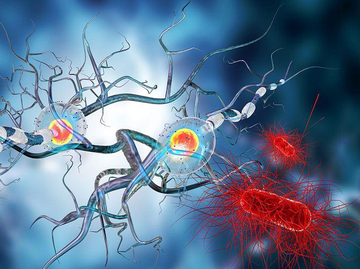 Multiple Sklerose: Welche Symptome gibt es?