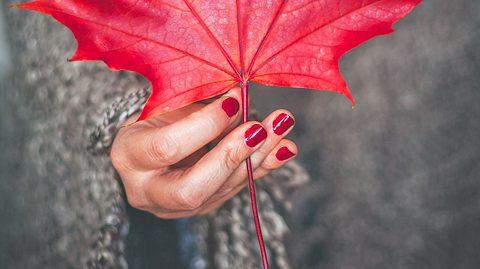 Schöne Herbstfarben für Ihre Finger