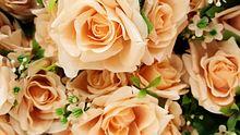 Was bedeuten pfirsichfarbene Rosen? - Foto: iStock