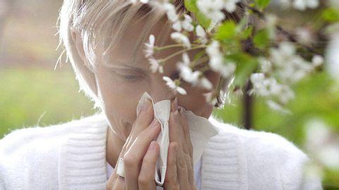 Allergie oder doch nur Erkältung?