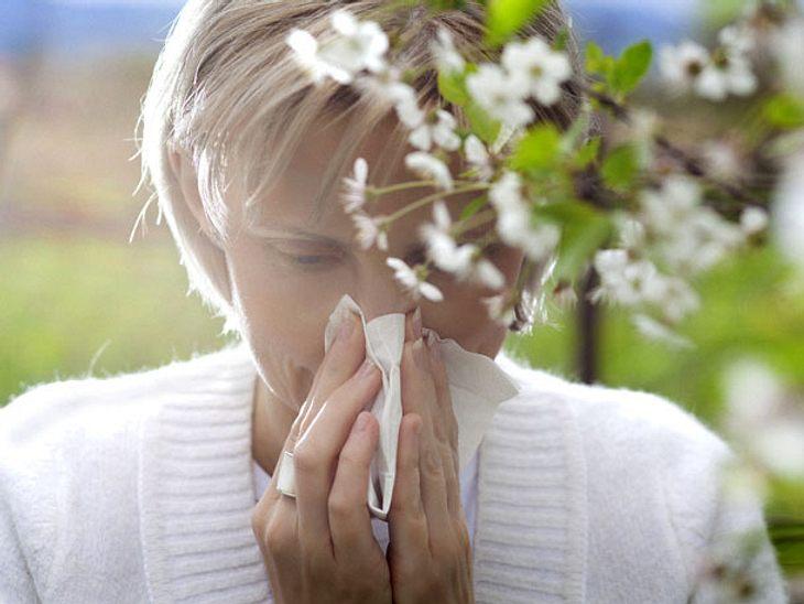 Pollenalarm: Allergie oder doch nur Erkältung?