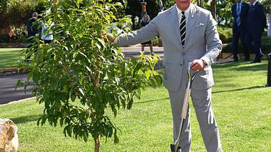 Prinz Charles: Der ewige Thronfolger