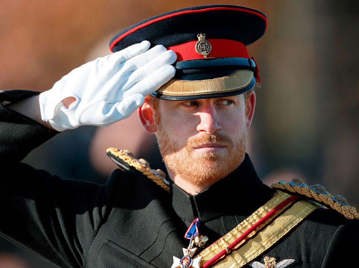 Prinz Harry | Kate Middleton, Máxima der Niederlande & Co: Die (Ex)-Berufe der Royals
