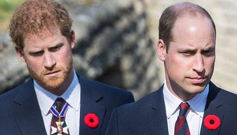 Prinz William spricht über den Tod seiner Mutter Diana. - Foto: Samir Hussein/WireImage via GettyImages