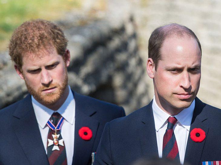 Prinz William spricht über den Tod seiner Mutter Diana.
