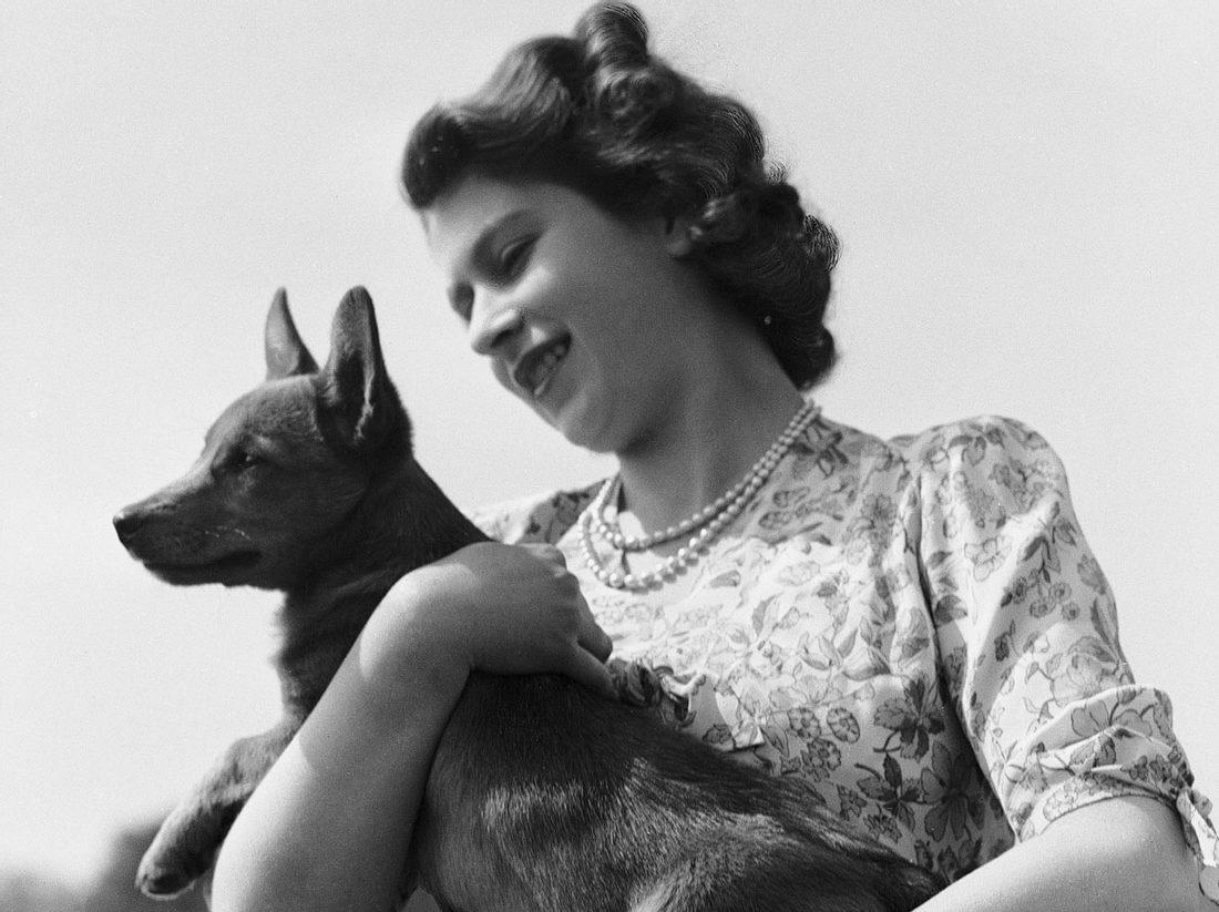 Queen Elisabeth und Corgi Susan