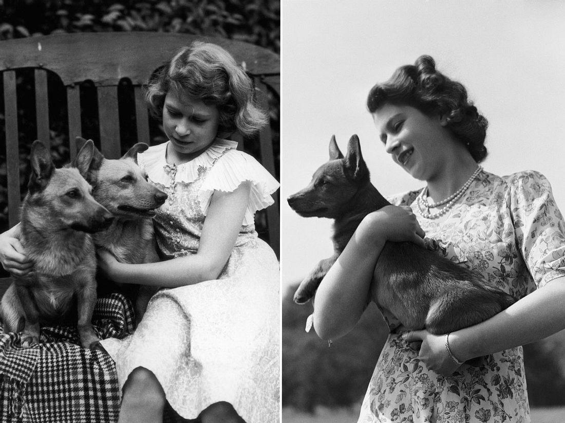 Queen Elizabeth II mit ihren Corgis in jungen Jahren