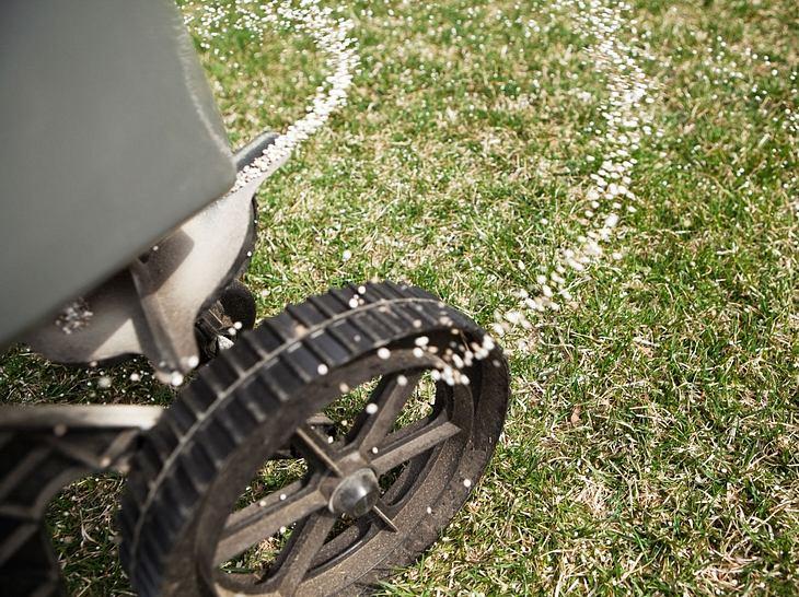 Sie können Ihren Rasen ganz ohne Chemie düngen.