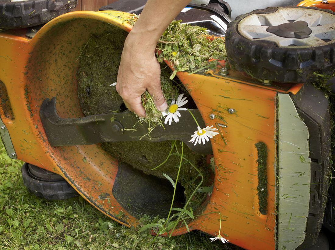 Beim Reinigen des Rasenmähers ist Vorsicht geboten.
