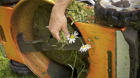 Beim Reinigen des Rasenmähers ist Vorsicht geboten. - Foto: victorass88 / iStock
