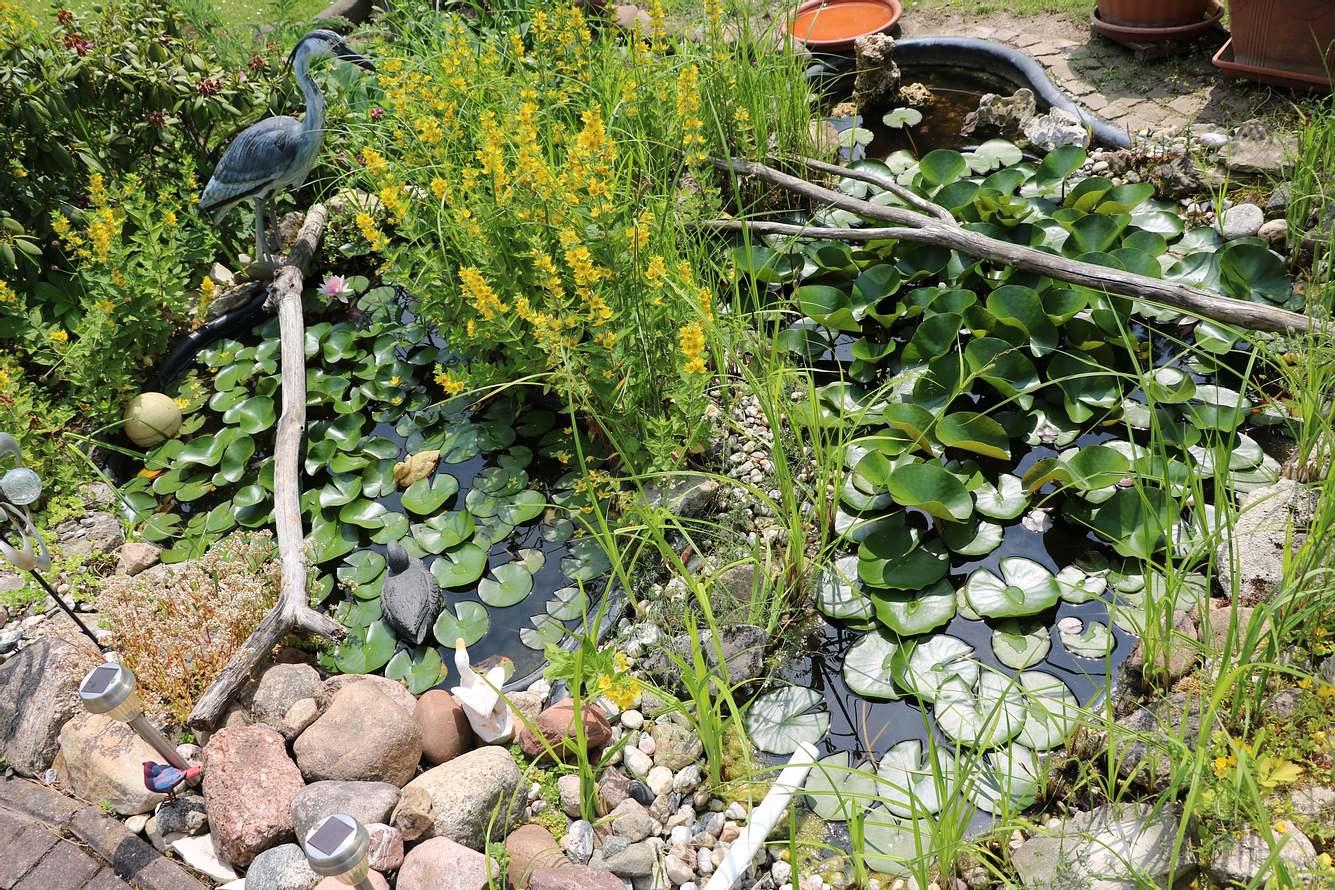 Ein Reiherschreck schützt den Teich vor Reihern