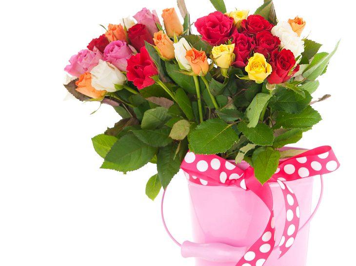 """Rose - je nach Farbe: Von """"ich mag Dich"""" bis """"ich liebe Dich"""""""