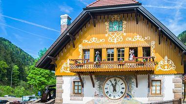 Schwarzwald: Großes Glück zum kleinen Preis - Foto: KenWiedemann / iStock