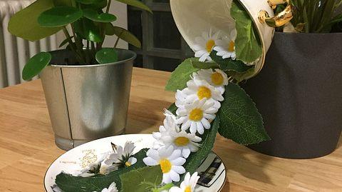 Die schwebende Tasse macht sich gut als selbstgemachte magische Deko - Foto: Liebenswert