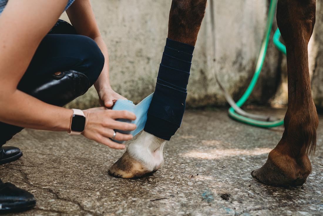 Frau verarztet Pferd mit Stallapotheke