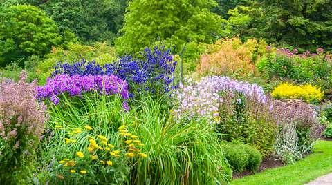 Stauden pflanzen: Tipps für ein blütenreiches Staudenbeet