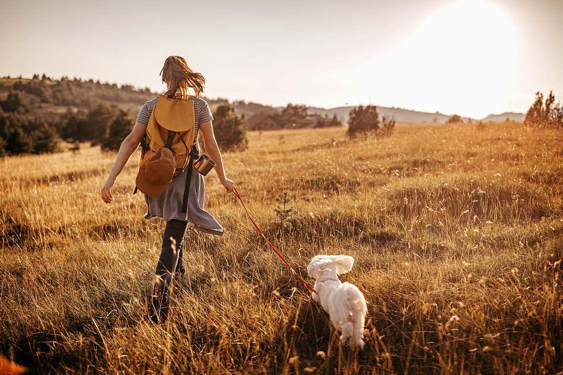 Frau geht Gassi mit ihrem Hund